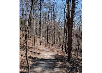 Roanoke hiking trail READ MOUNTAIN PRESERVE