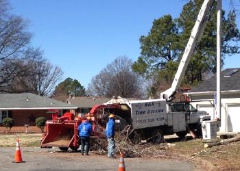 Newport News tree service R & K Tree service