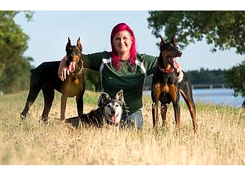 Oklahoma City dog training ROC Animal Training and Behavior