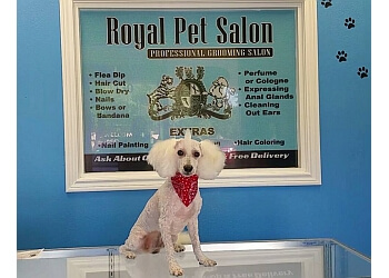 McAllen pet grooming ROYAL PET SALON