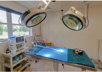 Fort Collins veterinary clinic Raintree Animal Hospital