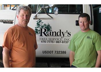 Evansville tree service Randy's Tree Service, Inc.