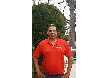 Rancho Cucamonga tree service Red Hill Tree Service Inc.