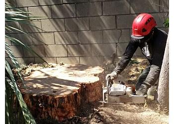 Rancho Cucamonga tree service Red Hill Tree Service, Inc.