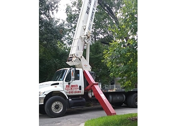 New Orleans tree service Reliable Tree & Stump Removal