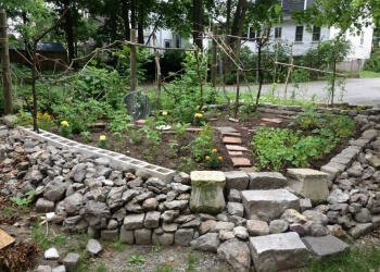 Boston landscaping company Restoring Roots Cooperative