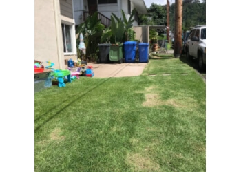 Honolulu lawn care service Rey's Yard Service