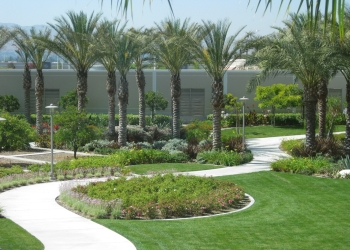 San Bernardino landscaping company Richard Pope & Associates