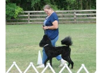 Fayetteville dog training River Run Dog Training
