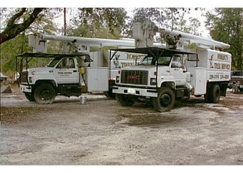 Jacksonville tree service Robert's Tree Service, Inc.