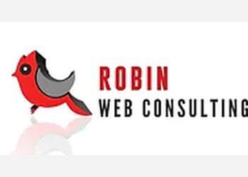 Chula Vista web designer Robin Web Consulting