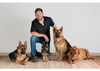 Phoenix dog training Rob's Dog Training and Sales