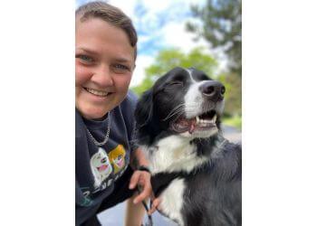 Rochester dog walker Rochester Dog Walkers
