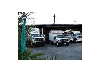 Glendale tree service Rock's Tree & Hillside Service, Inc.