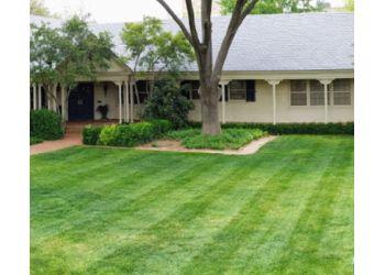 Lubbock lawn care service Roots Lawn & Landscape