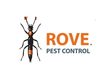 Pest Control Minneapolis  Rove Pest Control Minneapolis Pest Control Companies