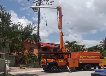 Hialeah landscaping company Royal Palm Landscaping