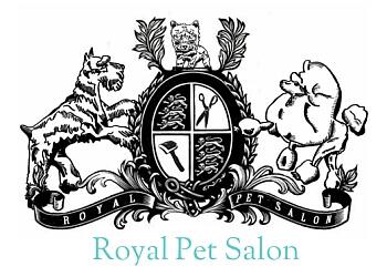 McAllen pet grooming Royal Pet Salon & Dog Grooming