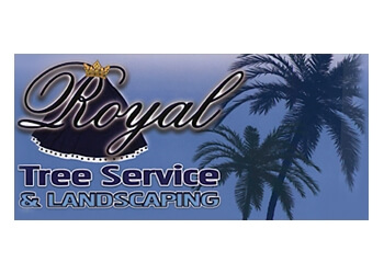 Hollywood tree service Royal Tree Service & Landscaping
