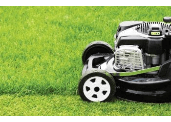 3 Best Lawn Care Services In Frisco Tx Expert
