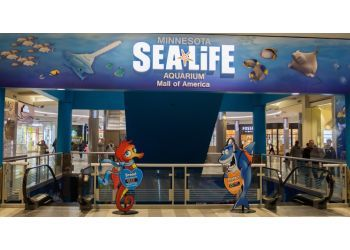 Minneapolis places to see SEA LIFE at Mall of America