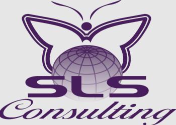Pasadena web designer SLS Consulting, Inc.