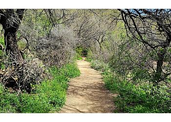 Tucson hiking trail Sabino Canyon Recreation Area