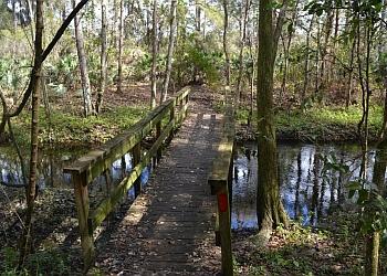 Lakeland hiking trail Saddle Creek Park Trail