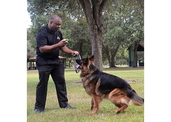 Fort Lauderdale dog training Sam Ivy K9 Consultants Inc.