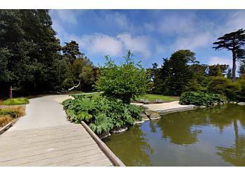 San Francisco places to see San Francisco Botanical Garden