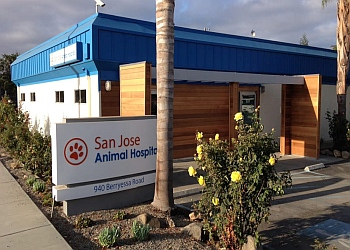 San Jose veterinary clinic San Jose Animal Hospital