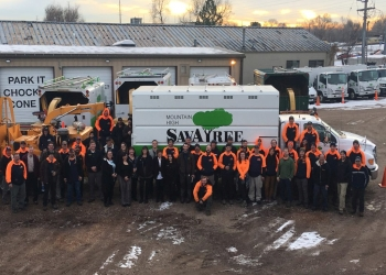 Lakewood tree service Sava Tree