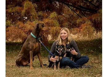 Oklahoma City dog walker Savvy Pet Sitter