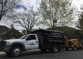 Boise City tree service Sawtooth Landscape & Tree Service