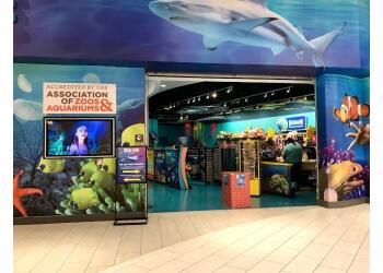Tempe places to see Sea Life Arizona