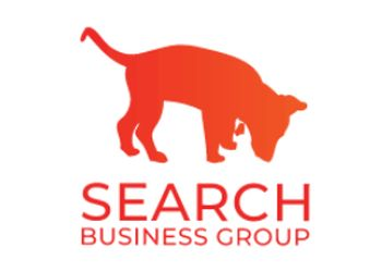 Fullerton web designer Search Business Group