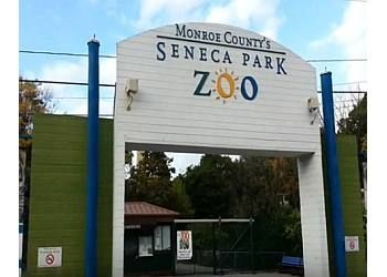 Rochester places to see Seneca Park Zoo