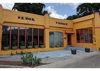 San Antonio vegetarian restaurant Señor Veggie