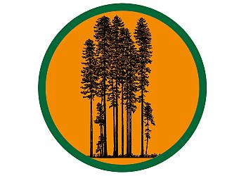 Oakland tree service Sequoia Tree Service LLC.