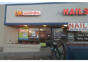 Aurora pet grooming Shaggy Doggy Salon