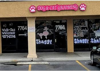 Las Vegas pet grooming Shaggy Shaggy Shake