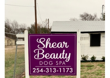 Waco pet grooming Shear Beauty Dog Spa