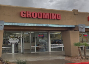 Tempe pet grooming Shelly's Pet Grooming