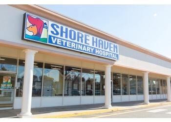 New Haven veterinary clinic Shore Haven Veterinary Hospital