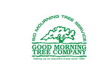 Austin tree service Sid Mourning Tree Service