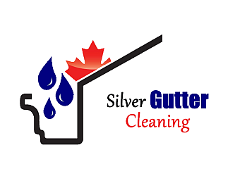 Charlotte gutter cleaner Silver Gutter Cleaning