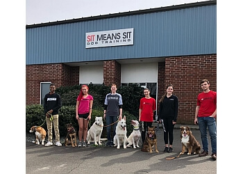 Raleigh dog training Sit Means Sit Dog Training Raleigh