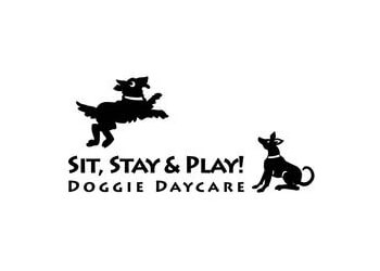 Sit, Stay & Play