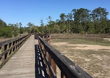 Savannah hiking trail Skidaway Island State Park Trail