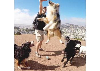 San Francisco dog walker Sniff